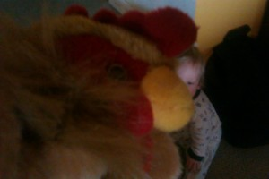 A chicken succesfully manages to photo bomb a picture of our son about to head off to the spare room to empty the bookshelf again.